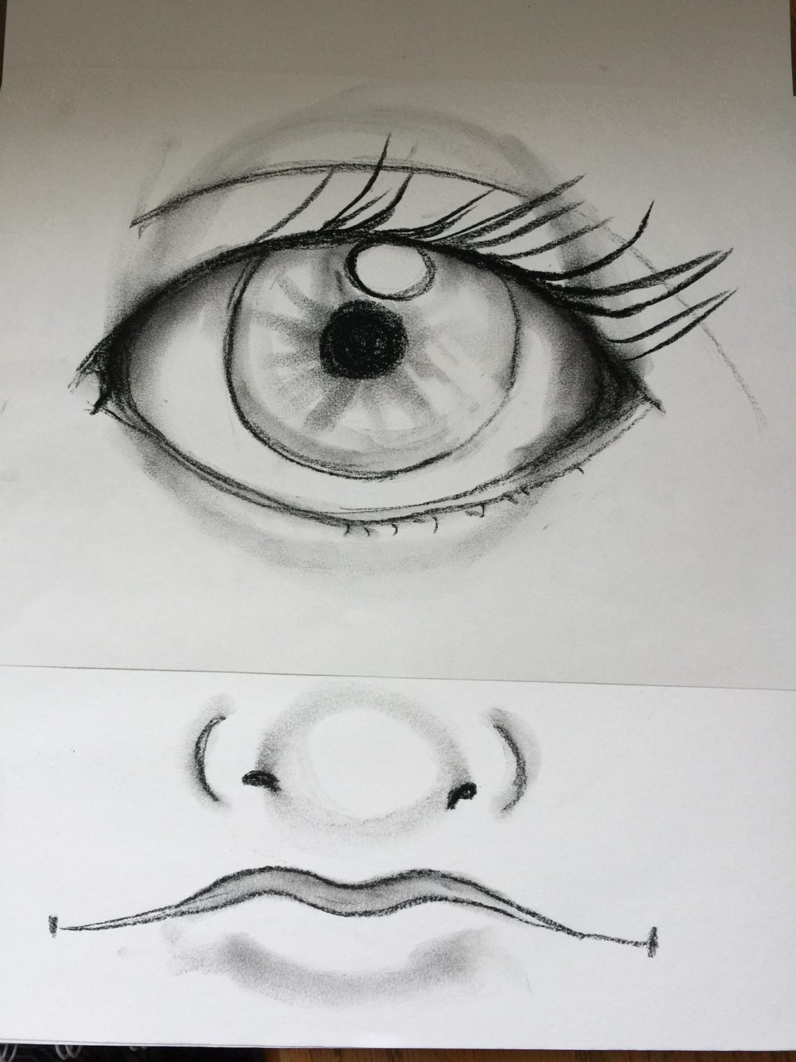 drawing of eye nose and mouth